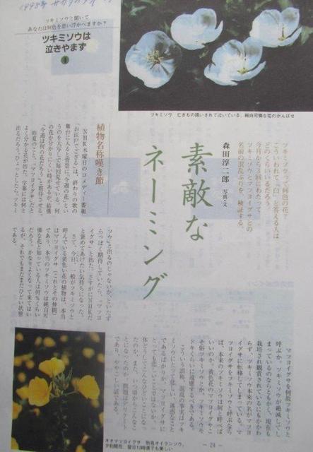 7‐2 <月見草は泣きやまず>森田淳二郎1998年著12頁.jpg