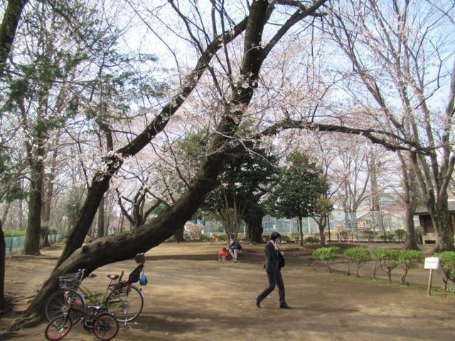 ③-1 上水公園.jpg