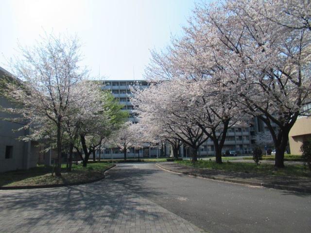 ⑧-1 一橋大学・国際キャンパス.jpg