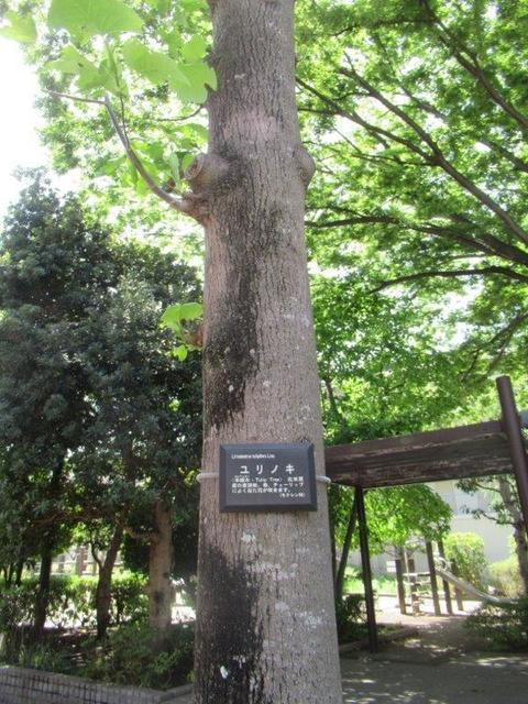 ⑨ー2 ガーデンハイツ小平-2.jpg