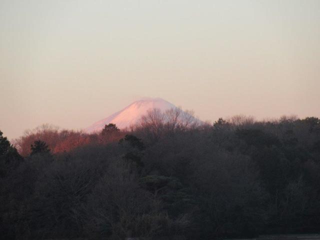 写真①-3 日の出直後の富士山.jpg
