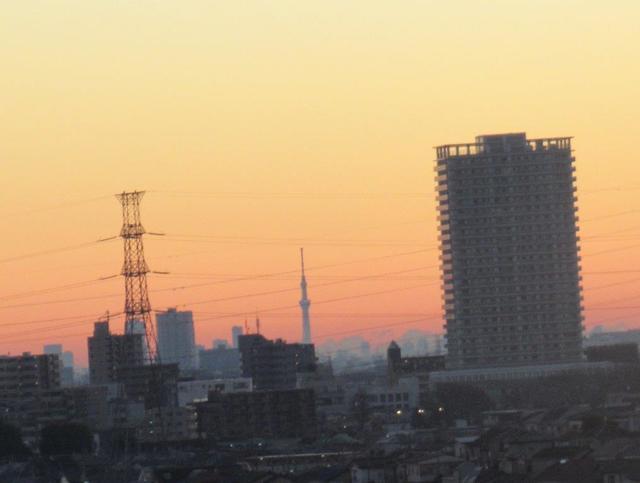 写真①-4 スカイツリー東村山駅ビルと送電鉄塔の間に.jpg