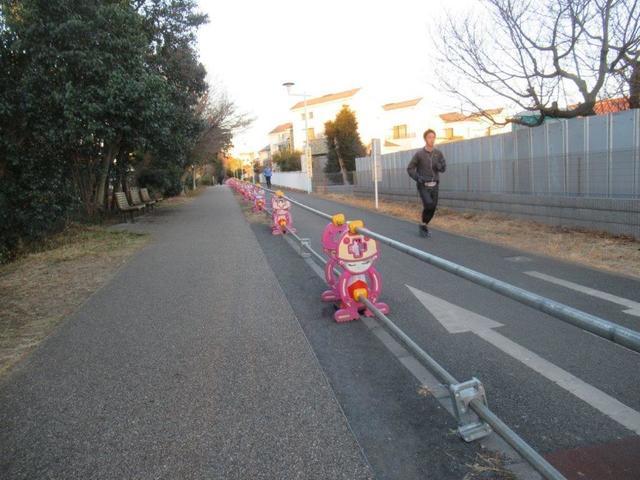 写真②-4 帰りの遊歩道、.jpg