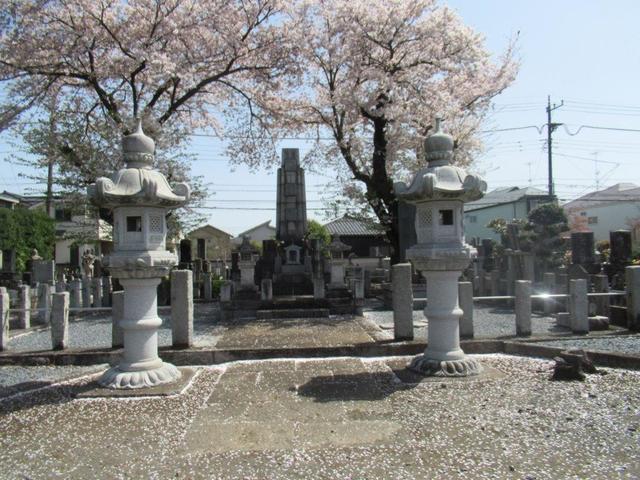 写真④-1 小平市・小川寺.jpg