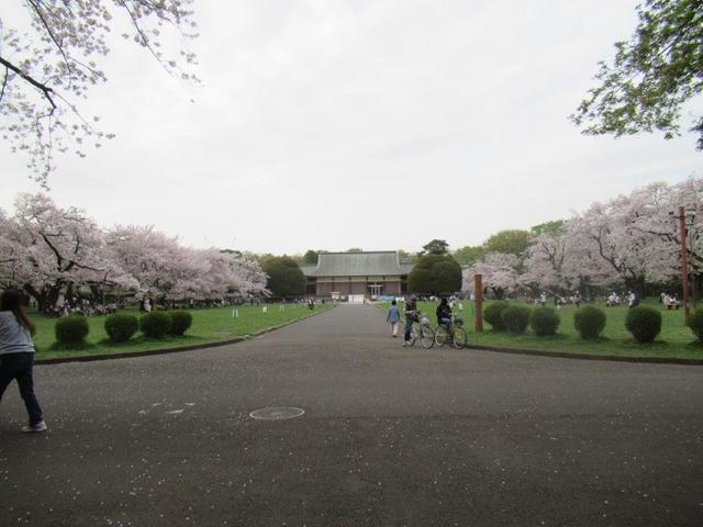 写真④-4 小金井公園・江戸建物園.jpg