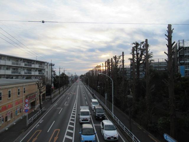 写真④-5 新青梅街道・久米川歩道橋.jpg