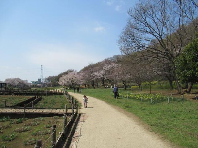 写真⑤-2 北山公園(1).jpg
