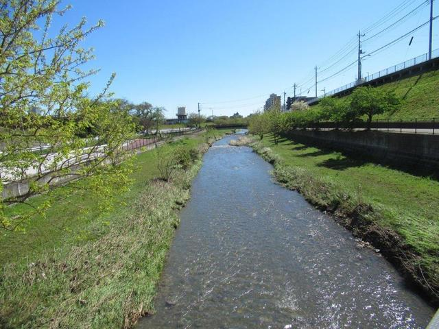 写真⑧-3 空堀川沿いに河津桜・既に葉桜.jpg